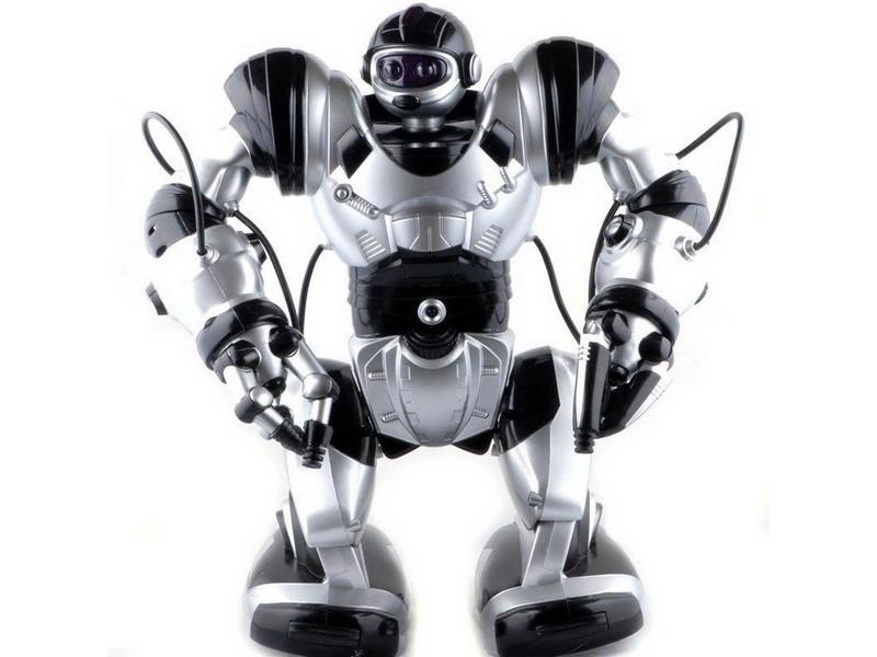 робот Robowisdom инструкция - фото 4